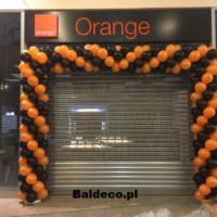 Brama z balonow_śłub